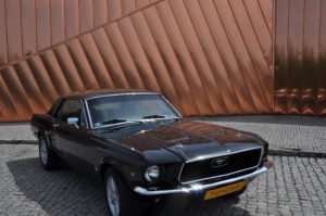 Mustang śląsk