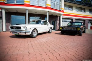 Mustang Żory white