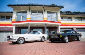 Mustang Rascar white