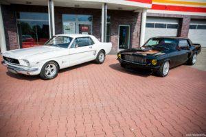 Mustang do ślubu śląsk white