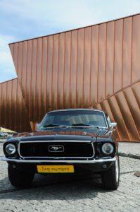 Mustang do wynajęcia