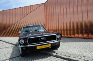 Mustang prezent