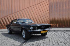 Mustang rascar