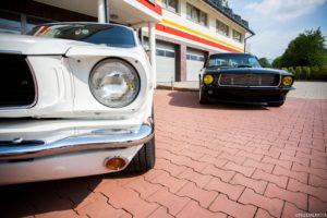 Mustang wynajem white